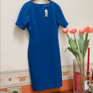 New Ann Taylor Petite Blue short sleeve Dreaa 6P